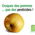 Le danger des pesticides