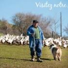 Foie gras issu de canard en plein air, une vidéo de la ferme Arnabar