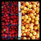 Les fruits et légumes de juin! Mangez de saison
